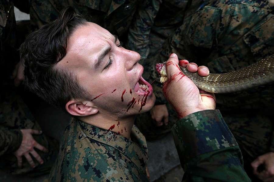 US soldiers drink cobra blood, eat scorpions