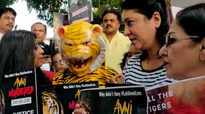 Mumbaikars take part in the global protest for Tigress #Avni at Shivaji Park