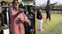 B-town loves kite flying, but what about those dying birds!