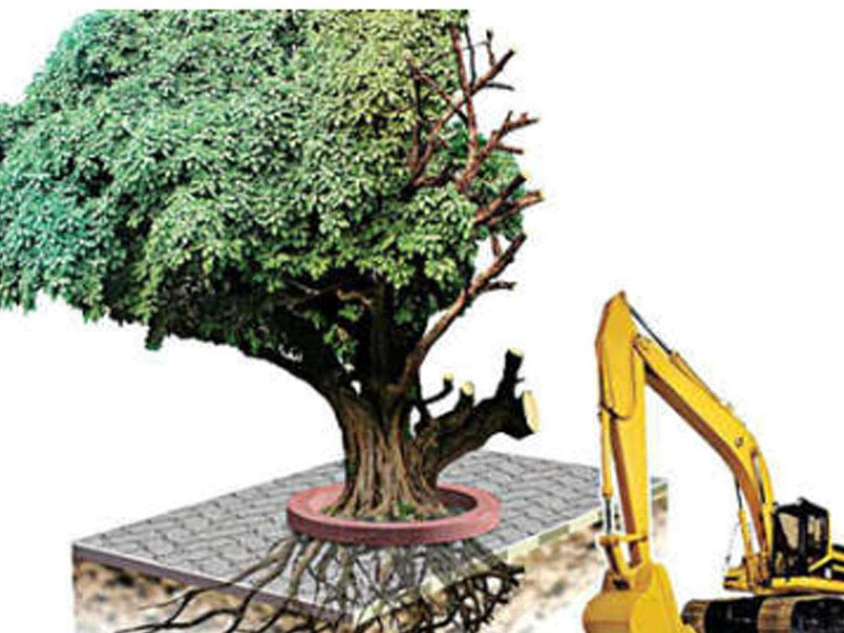 cutting of trees: Latest News, Videos and Photos of cutting