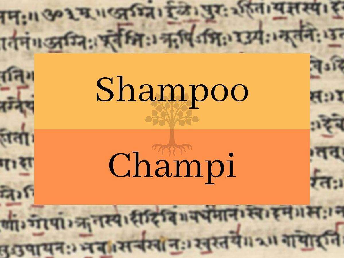 English words that have a Sanskrit origin | The Times of India
