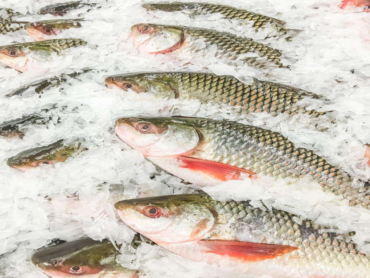 10 healthiest Indian fish varieties and why you must have